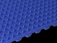 Zahnriemen T 10 PSN 5 x 5 FDA für Lebensmittel blau
