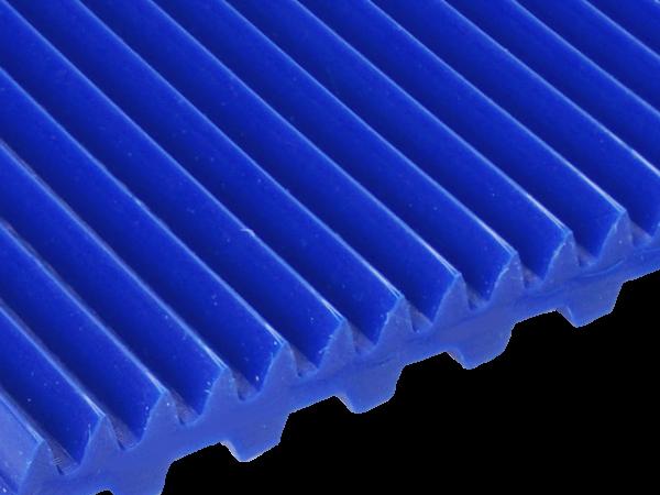 Zahnriemen T 10 Lamelle 5 mm FDA für Lebensmittel blau